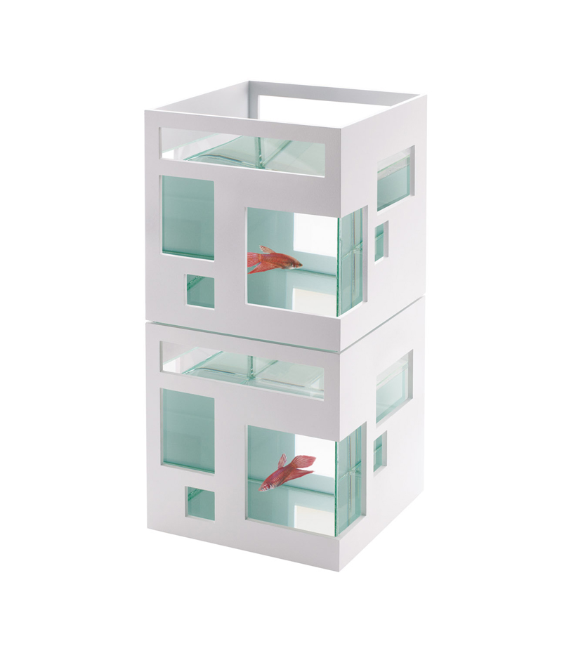 Umbra akvarium